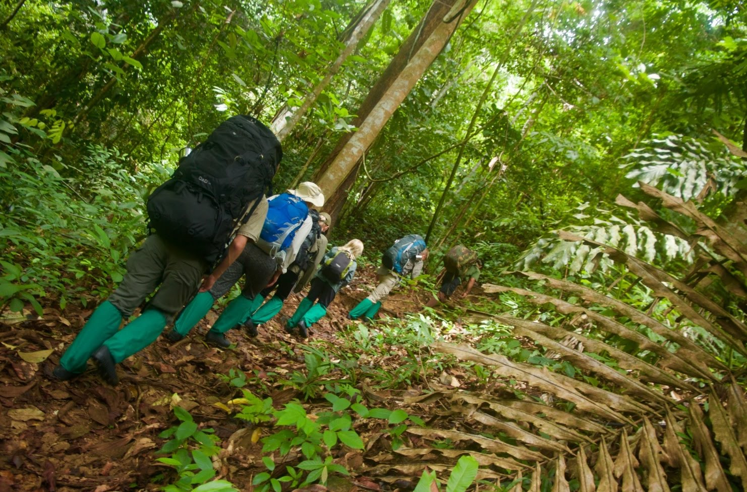 Outdoor Activities  Borneo Outdoor Expeditions
